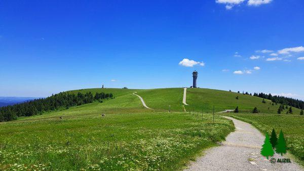 Blick auf den alten Funkturm