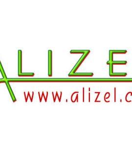 Gründung der ALIZEL 2009