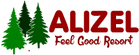 ALIZEL Group