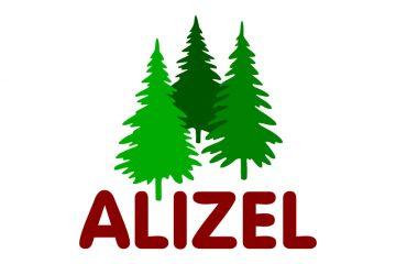 ALIZEL Gruppe